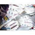 Module SAMSUNG ANX 3 mata | 12V IP68 Waterproof (KOREA)