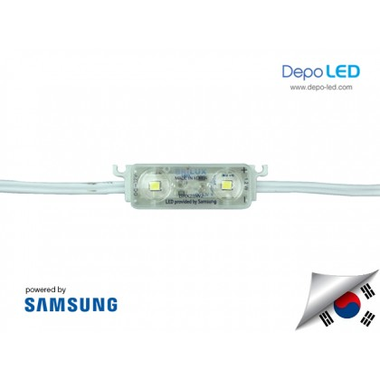 LED Module SAMSUNG Brilux ANX 2 mata SMD 2835 | 12V IP68 Waterproof (KOREA)